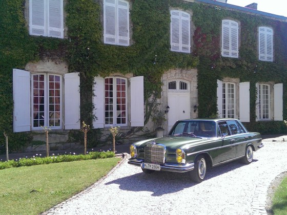 Olive vor dem Haus des Erstbesitzers - Chateau Lichine-Prieure