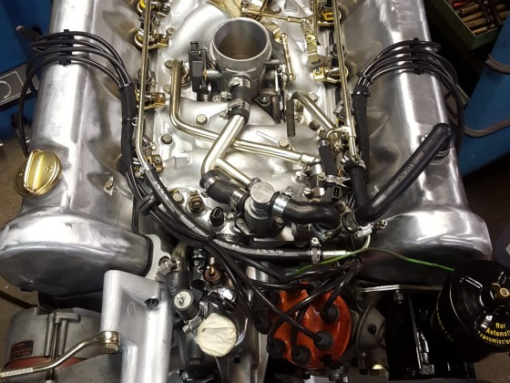 V8 Prachtstück